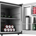 Mejores Mini refrigerador para auto