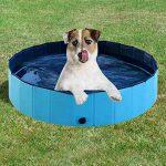 Mejores Albercas para perros