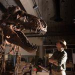Discovery t rex dinosaur
